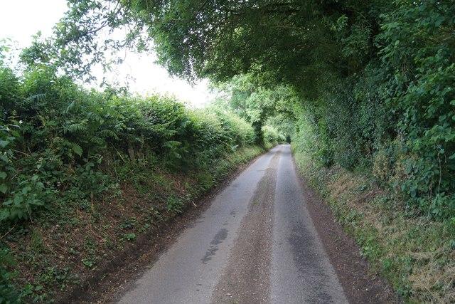 Waltham Lane - direction North Waltham