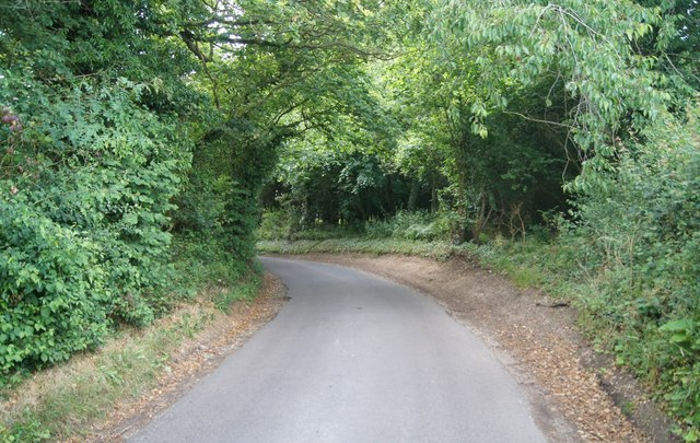 Bend in Waltham Lane