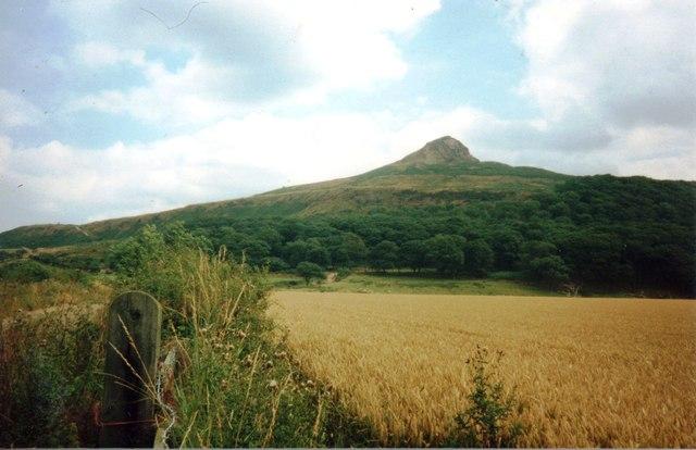 Roseberry Topping in 1991