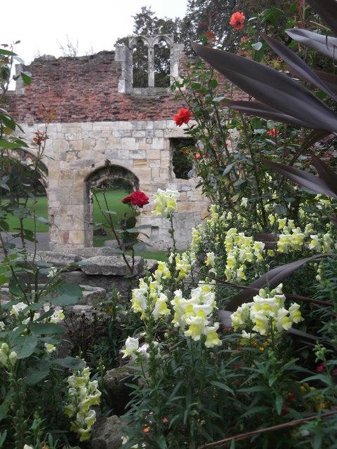 Hospitium gardens, St Mary's Abbey, York