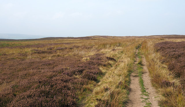 Bridleway passing Haggerstone Moss