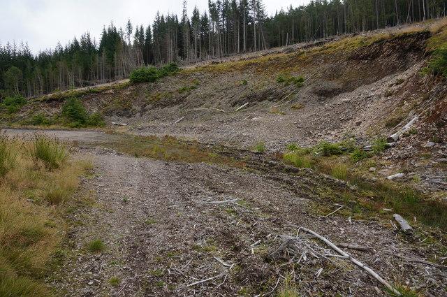 Disused quarry, Big Wood