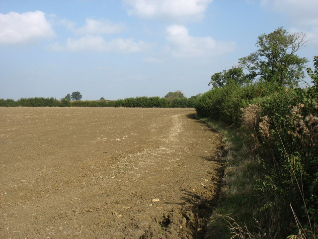 Farmland near York Farm