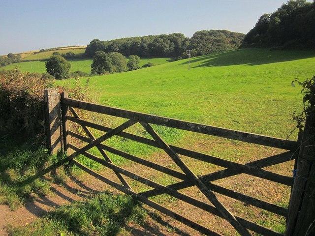 Field near Stokenham