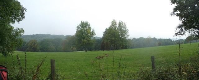 Panorama of Great Church Wood