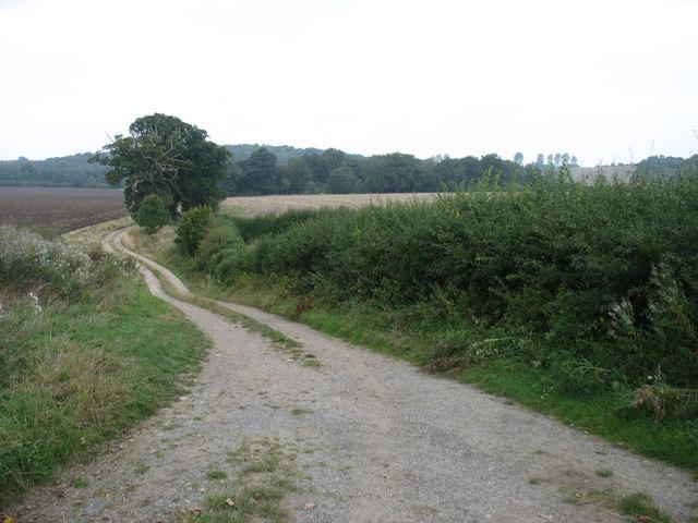 Track west of Ettington