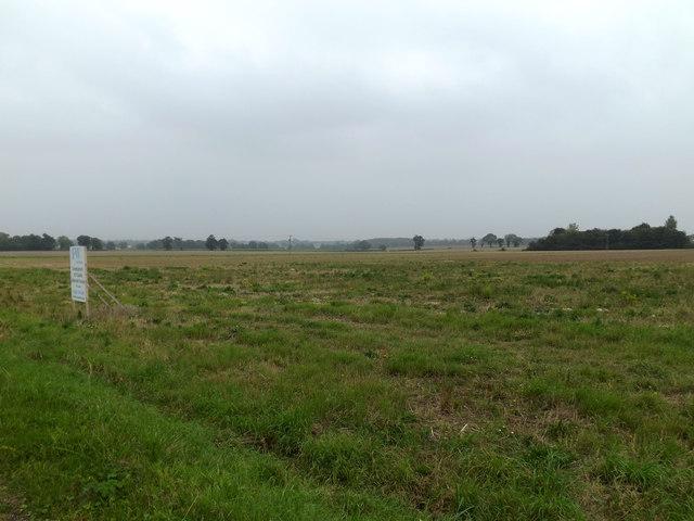 Fields off the B1332 Norwich Road