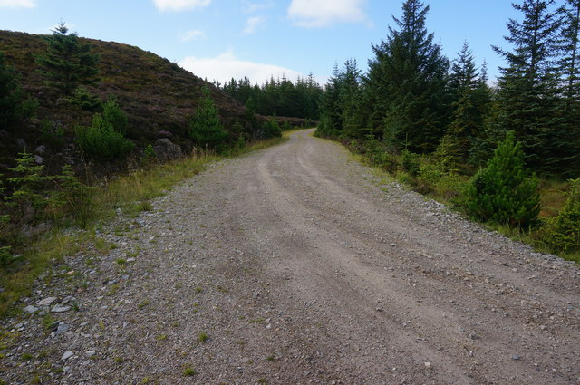 Forestry track, Tummel Forest