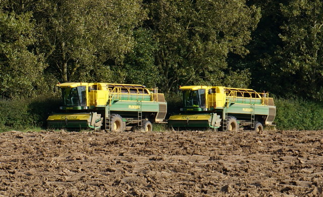 Two Ploeger EPD 538 Pea Harvesters