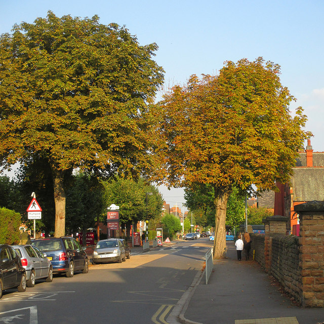 Trent Boulevard on a September evening