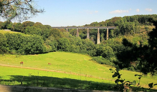 Field and viaduct near Menheniot