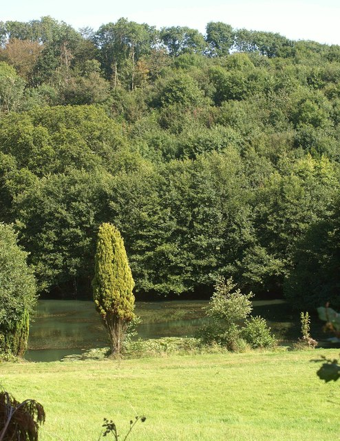 Pond by the River Seaton