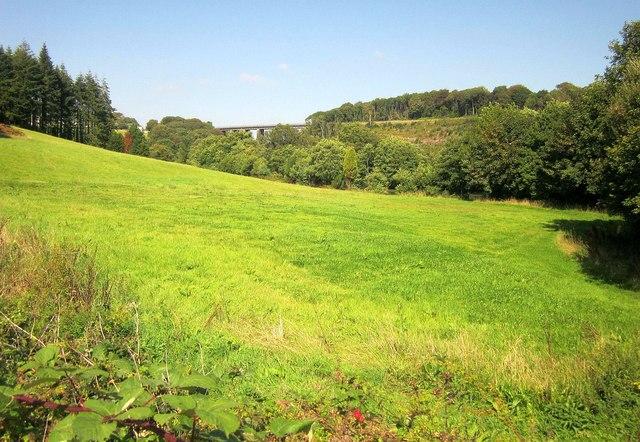 Meadow near Roundhouse Bridge