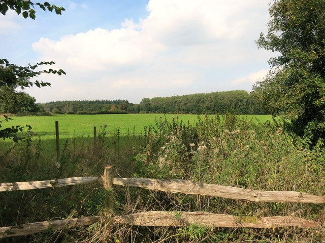 Field and Fence near Pusey