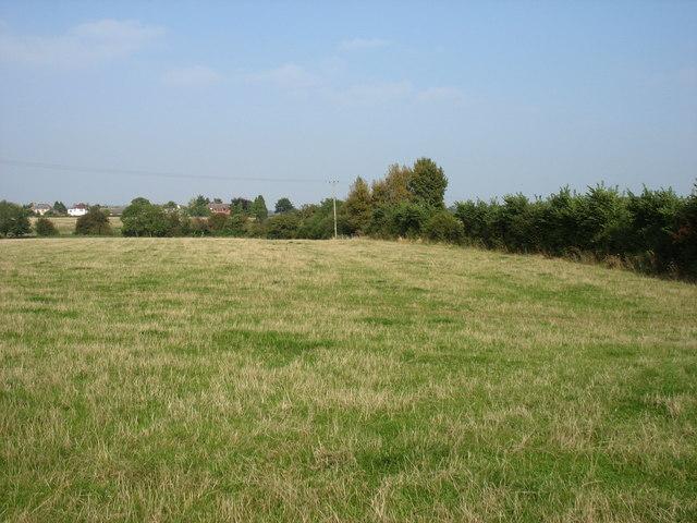 Fields by the Walton Road