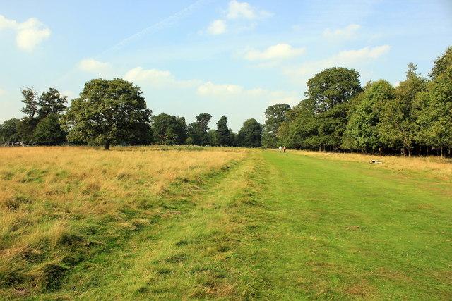Deer Park Walk, Attingham Park