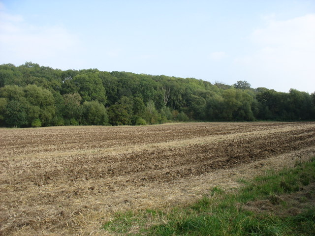 Farmland south of Walton