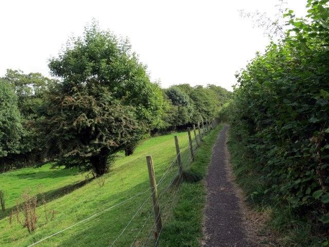 Llwybr Llandybie Path
