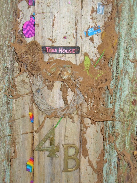 Tree House 4B