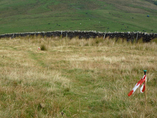 Moorland and wall below Totridge