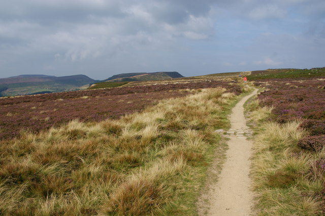 The Cleveland Way on Carr Ridge