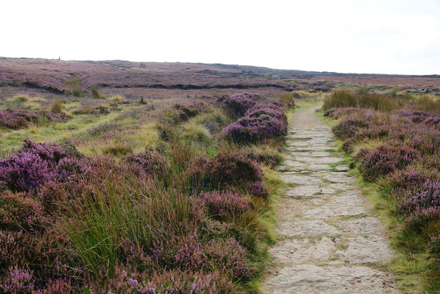 The Cleveland Way on Urra Moor