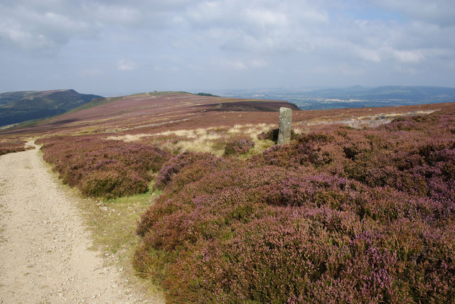 Boundary stone by the Cleveland Way