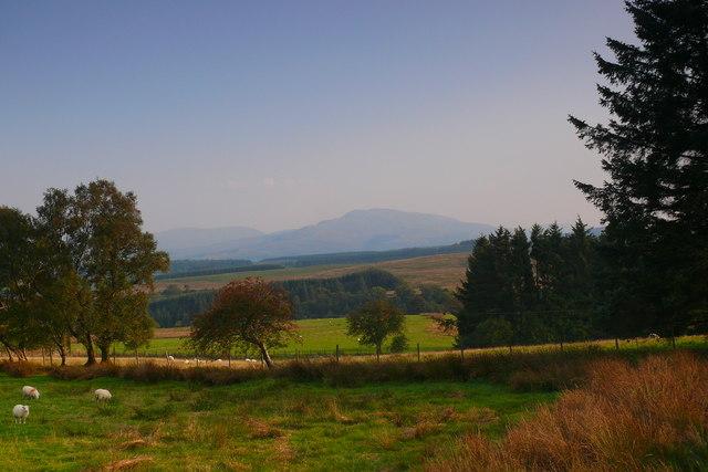 Caeau ger Blaen y cwm isaf / Fields near Blaen y cwm isaf