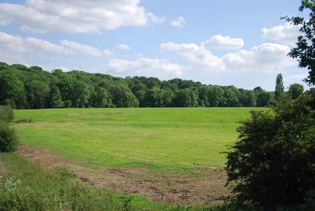 Farmland near Hever
