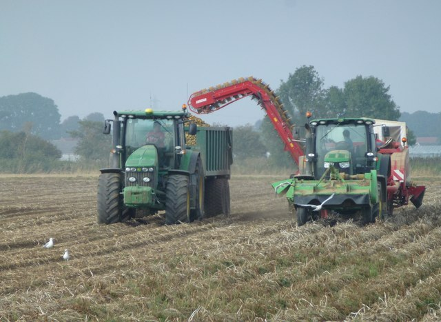 Harvesting potatoes, Donington South Ing
