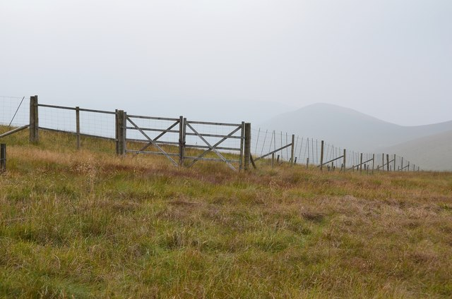 Deer fence, Whitehope Heights