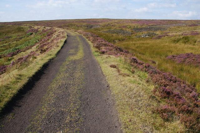 Railway embankment near Middle Head