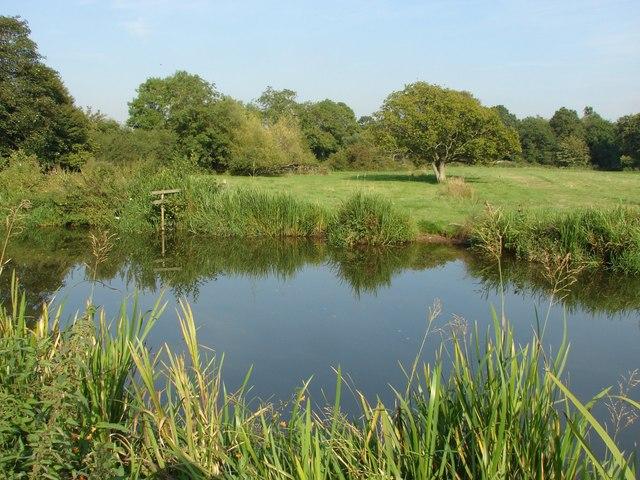 River Wey Navigation