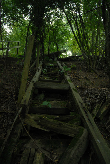 Remains of steps on old railway embankment