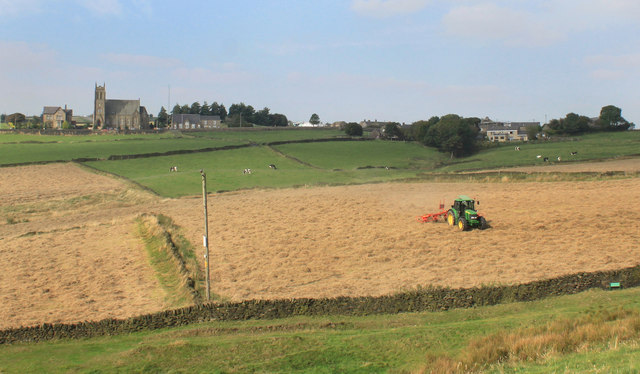 Haymaking near Newhouses.