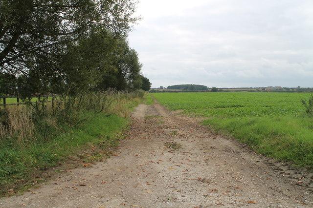 Track off Kelsey Road
