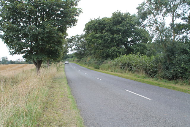 Ellmore Lane