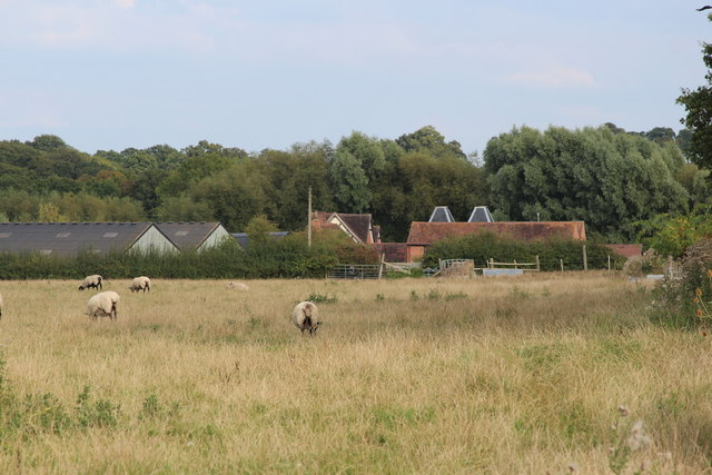 View to Oast house at Gilberts Farm