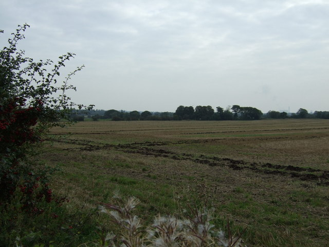 Farmland off Gerrard's Lane