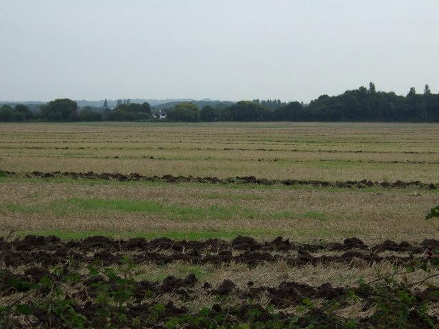 Stubble field off Church Road