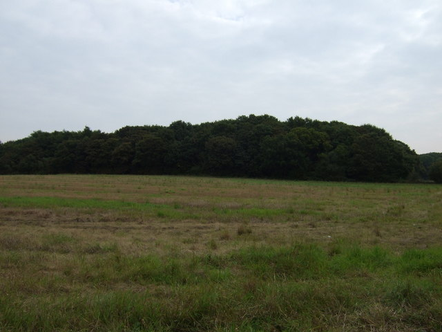 Farmland towards Green's Bridge Plantation