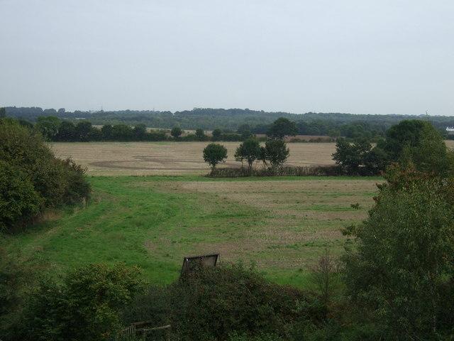 Farmland near Water Lane Farm