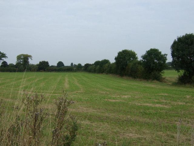 Farmland north of Water Lane