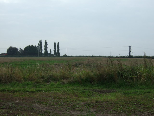 Farmland south of Alder Lane