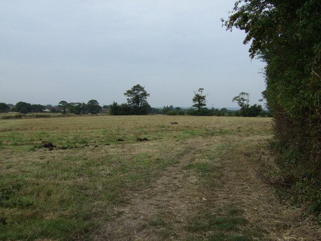 Farmland west of Chapel Lane
