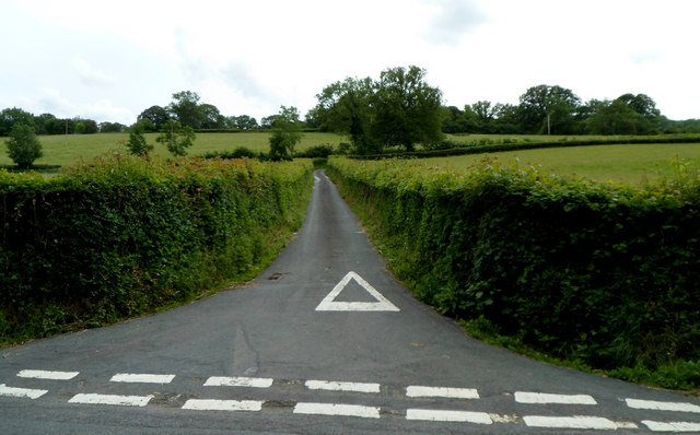 Hedge-lined lane to Neuadd-fawr and Llwynon