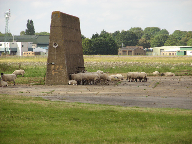 Sheep sheltering by blast wall