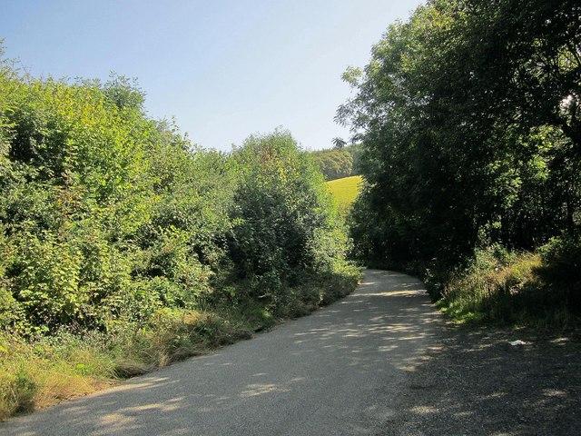 Lane down Seaton valley