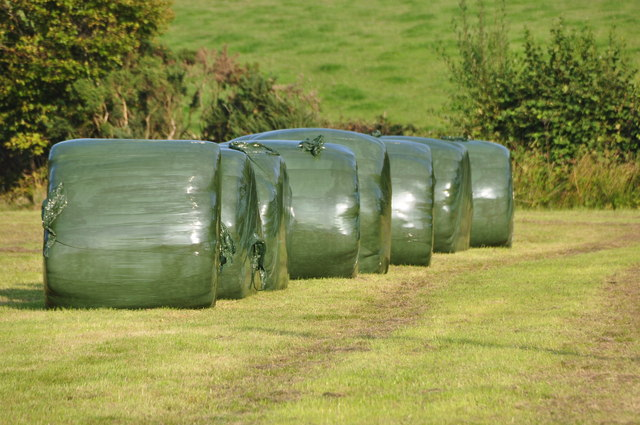 Mid Devon : Grassy Field & Bales