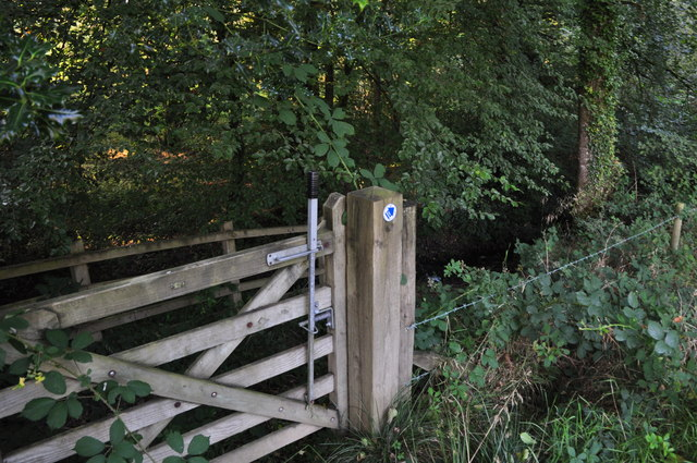 Mid Devon : Gate & Woodland